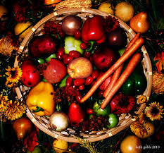 thanksgiving veggies the native american experience of thanksgiving sorrow apathy joy