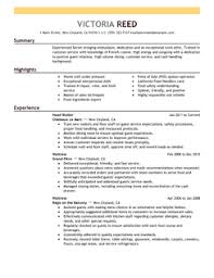 Best Professional Resume Examples by Extravagant Resume Examples 1 Best For Your Job Search Cv Resume