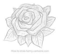 sketches of roses 008 jpg clip art library