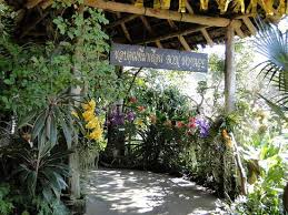 bai orchid and butterfly farm chiang mai top tips