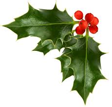 images of christmas holly free download clip art free clip art