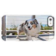 australian shepherd iphone 4 case australian shepherd iphone se u0026 iphone 5 5s cases zazzle