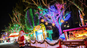 palm harbor christmas lights 25 best things to do in florida for the holidays coastal living