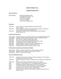 Example Format Of Resume by Related Post For Resume Example Cv College Scholarship Inside