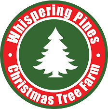 christmas trees u2013 whispering pines christmas tree farm