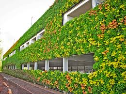 Vertical Garden Walls by Europe U0027s Largest Living Wall Unveiled In The Uk National Grid