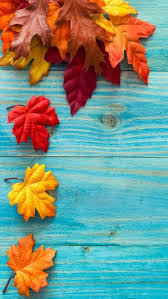 iphone wall thanksgiving tjn fall junk wallpapers