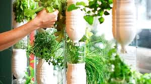 20 indoor herb garden ideas youtube