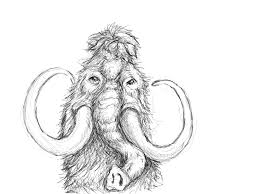 wooly mammoth u2014 10 000 bad drawings