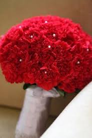 Red Carnations Red Carnations Bridal Bouquet Bouquet Wedding Flower