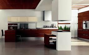 designer kitchen ideas modern kitchen design ideas 2012 caruba info
