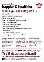 raw feeding my dog album on imgur