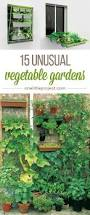 Hanging Vegetable Gardens by 15 Unusual Vegetable Garden Ideas