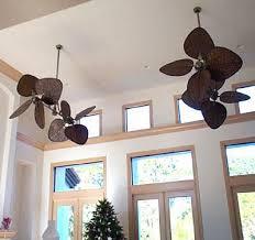fanimation caruso ceiling fan 35 best fanimation interesting ceiling fans images on pinterest