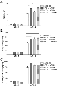 by p d sirna silencing of pd l1 and pd l2 on dendritic cells augments