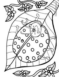 insect coloring pages 30 free insects and bugs coloring pages