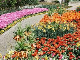 76 best beautiful backyards u0026 gardens images on pinterest