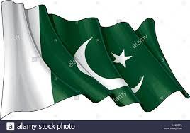 Pakistane Flag Vector Illustration Of A Waving Pakistani Flag All Elements