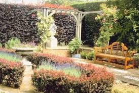 outdoor plants that live all year round home guides sf gate