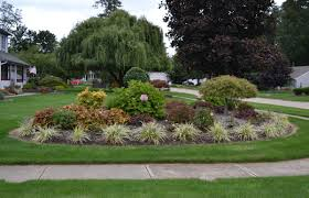 landscaping for your septic system marketing visible