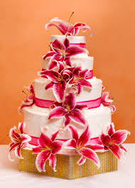 barcelo bavaro beach resort weddings yes i do cake weddings