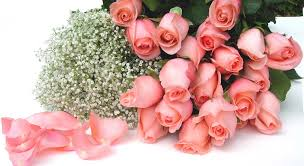 Wholesale Fresh Flowers Logistic Farms U2013 Logistic Farms Is A Wholesale Flower Company