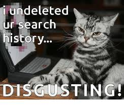 Disgusting Monday Memes - undeleted ur search history disgusting meme on me me