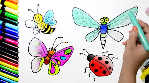 draw and color honey bee butterfly dragonfly lady bug coloring