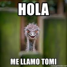 Ostrich Meme - hola me llamo tomi rapist ostrich meme generator