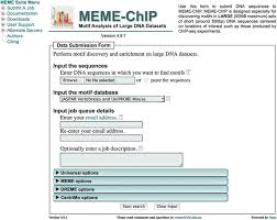 Meme Suite - motif based analysis of large nucleotide data sets using meme chip