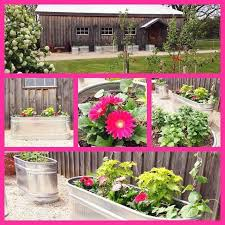 creating a raised herb garden from water troughs hometalk