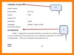 Sample Java Resumes by 4 Resume Declaration Sample Sales Resumed