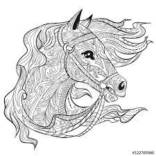hand drawn doodle horse face animal head illustration