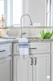 Under The Kitchen Sink Organization by Organization For Under The Kitchen Sink Kelley Nan