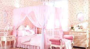 canopies for girls beds u2013 gemeaux me