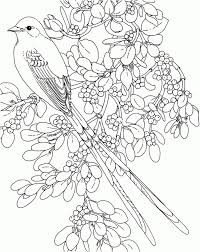 rose coloring pages and book uniquecoloringpages printable