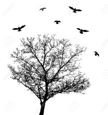 vector tree with birds royalty free cliparts vectors and stock
