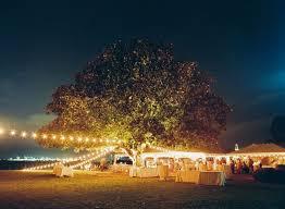 outdoor wedding lighting 106 best outdoor wedding lighting images on outdoor
