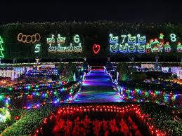 christmas light show toronto christmas lights spectacular nsw holidays accommodation things