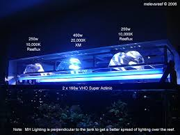 metal halide light color metal halide lighting a brief overview melev s reef