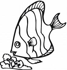 printable 34 cute fish coloring pages 8687 rainbow fish coloring