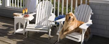 pet friendly hotels in maine except dogs u0026 animals visit portland