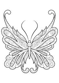 detailed butterfly coloring pages for adults butterfly coloring page butterflies to color butterfly coloring page