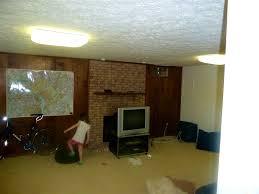 basement ceiling lights home design