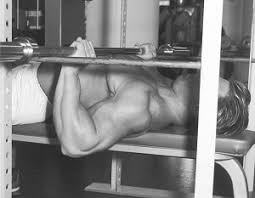Correct Technique For Bench Press Bench Press Technique From Hardgainer Com