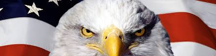 Bald Eagle On Flag Trf5133 American Or U0027merican
