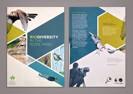 brochure front page ideas best 25 brochure cover ideas on