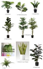 The Best Indoor Plants The Best Artificial Plants I Could Find