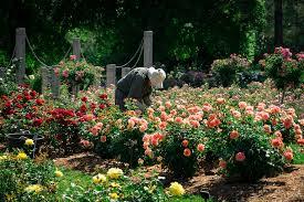 Virginia Botanical Gardens At Norfolk Botanical Gardens Carr Photography