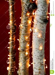 christmas sticks with lights christmas lights on birch branches stock image image of season